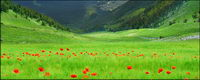 Beau paysage paysage mat��riel photo