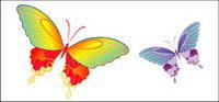 vector de material Mariposa