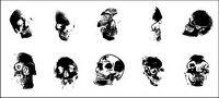 Go Media produziert Vektor Material - die menschliche Schädel