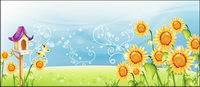 Sunflower paysage