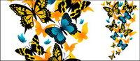 Vector mat��riel exquis papillon