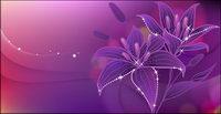 Sueños del lirio en flor