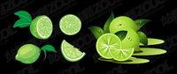verde lim¨®n vector material