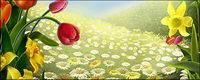 Blumen und Ostern