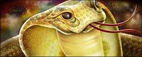Cobra sehenswerte psd Materials