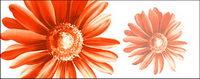 Fleurs peintes �� la main en couche mat��riel psd-12
