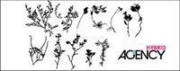 Les plantes fan��s Vector