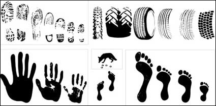 Link toVector material traces of a variety of tire footprint