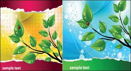 Link toLeaf ladybug theme vector material