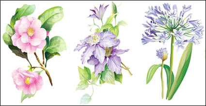 7 elegant watercolor flowers vector material
