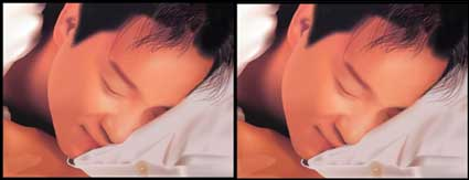 Link toLeslie cheung (brother) ai material