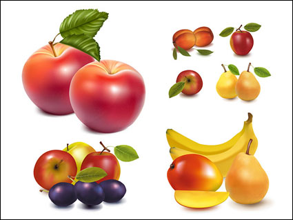 Link toLifelike fruit vector of material