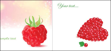 Romantic berries vector of material