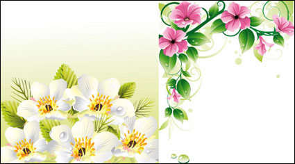 Link toVector flower borders u0026amp; background