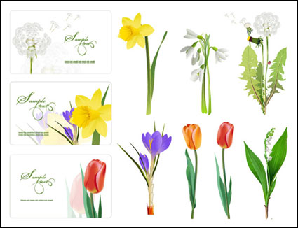 Some flowers vector