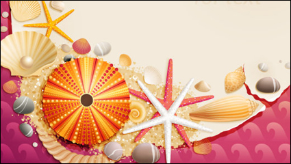 Shells and starfish material 01 – vector