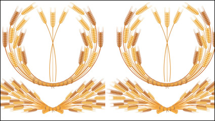 Yellow wheat 05– vector material