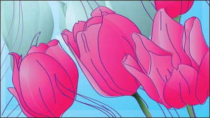 Hand-painted tulips vector material -1