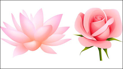 Link toBeautiful small flowers vector material -4