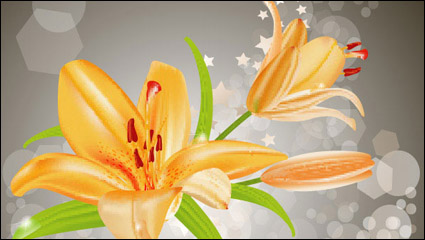Link toYellow lilies vector -3