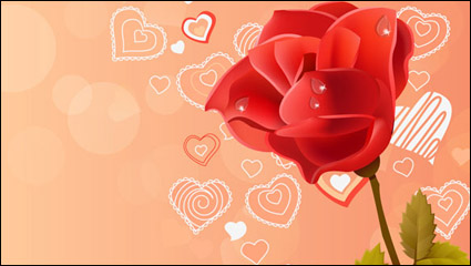 Link toPink rose red rose vector