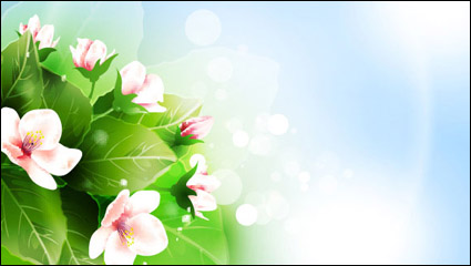 Link toBeautiful flowers vector material -2