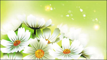 Link toBeautiful flowers 01 - vector