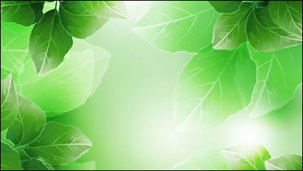 Link toBeautiful green leaves vector material