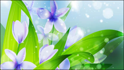 Link toBeautiful flowers vector material -1