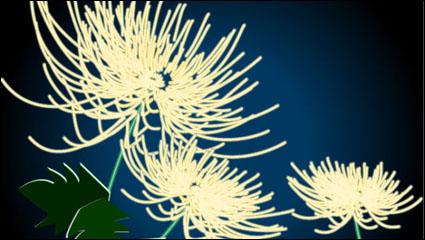 Exquisite chrysanthemum vector material