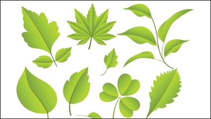 Leaves material 02 – vector material