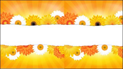 Link toFlowers petals lace background 04 - vector