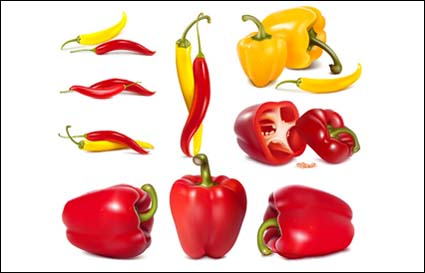 Cpepper, vegetables, bell peppers vector
