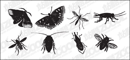 Link toBlack and white insect vector material