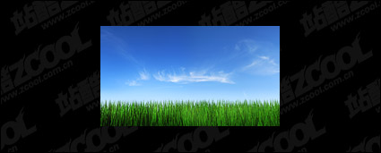Grass sky picture material-4