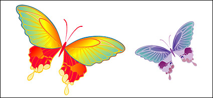 Link toVector material butterfly
