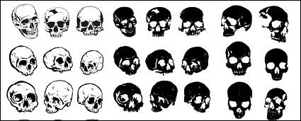 Link toGo media produced vector material - multi-angle skull