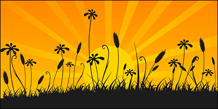 Link toVector material beauty of the sunset