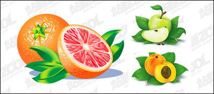 Oranges, apples, peach vector material