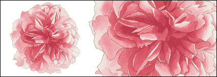 Hand-painted flowers layered material psd-2
