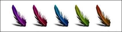 Colored feathers series icon png