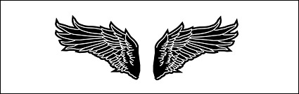 Black and white wings of vector